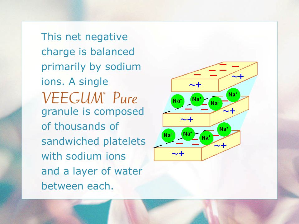 This net negative charge is balanced primarily by sodium ions. A single granule is composed of thousands of sandwiched platelets with sodium ions and