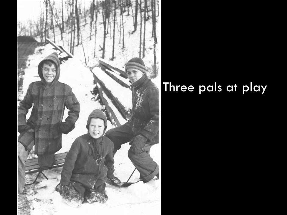 Three pals at play