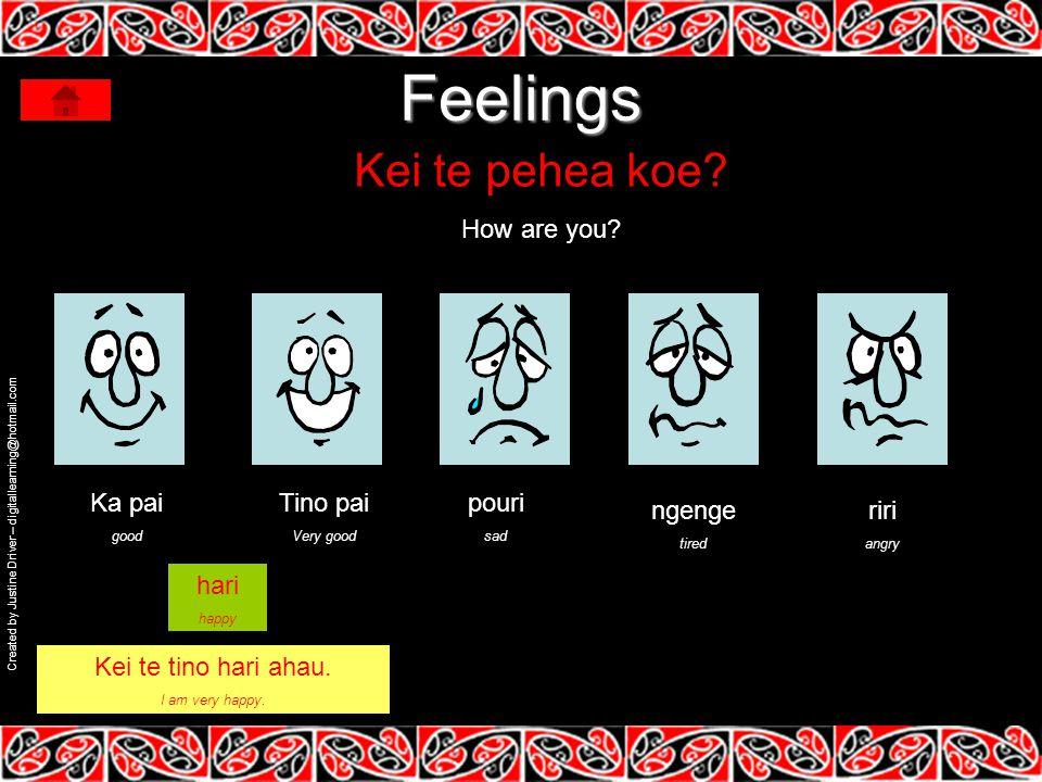 Feelings Kei te pehea koe.How are you.