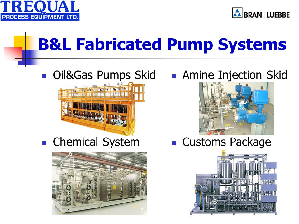 B&L Fabricated Pump Systems Oil&Gas Pumps Skid Chemical System Amine Injection Skid Customs Package