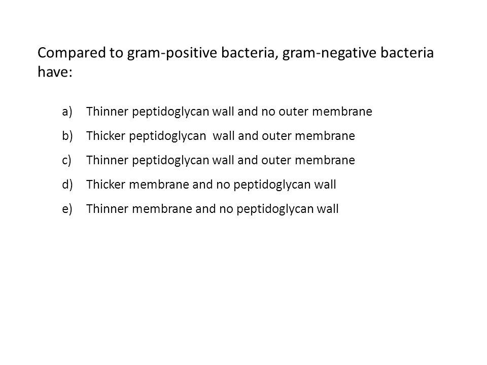 Compared to gram-positive bacteria, gram-negative bacteria have: a)Thinner peptidoglycan wall and no outer membrane b)Thicker peptidoglycan wall and outer membrane c)Thinner peptidoglycan wall and outer membrane d)Thicker membrane and no peptidoglycan wall e)Thinner membrane and no peptidoglycan wall