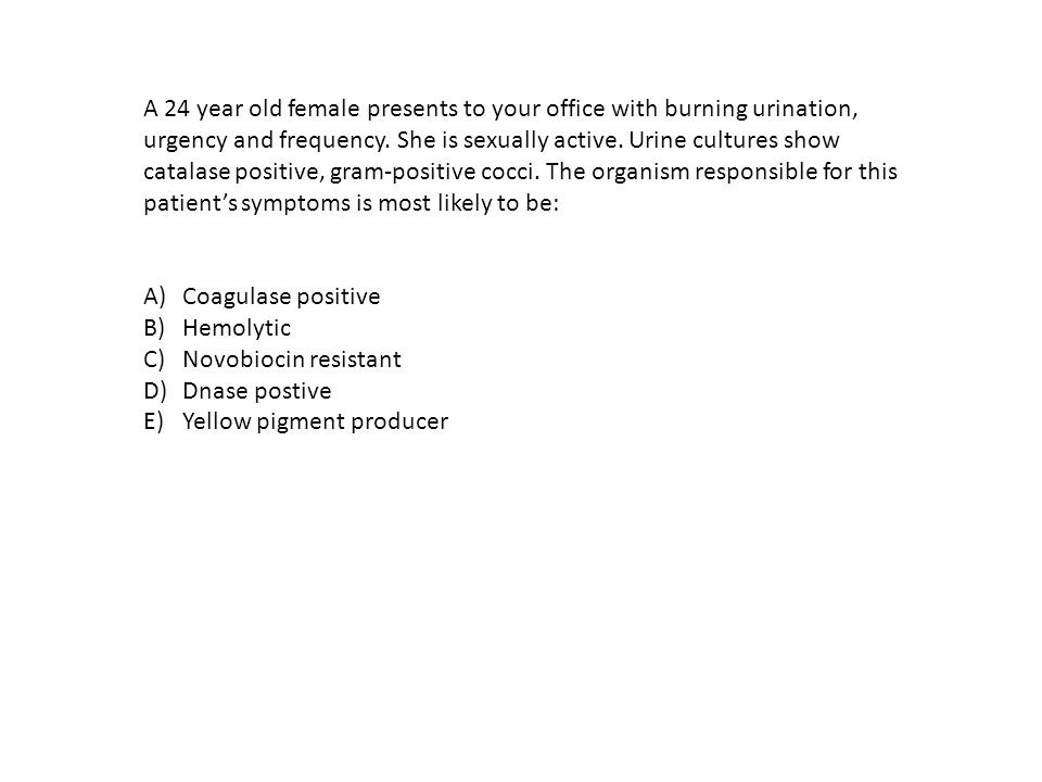 A 24 year old female presents to your office with burning urination, urgency and frequency.