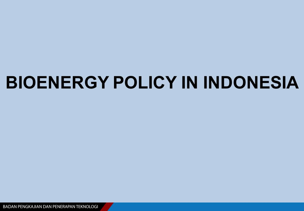 BIOENERGY POLICY IN INDONESIA