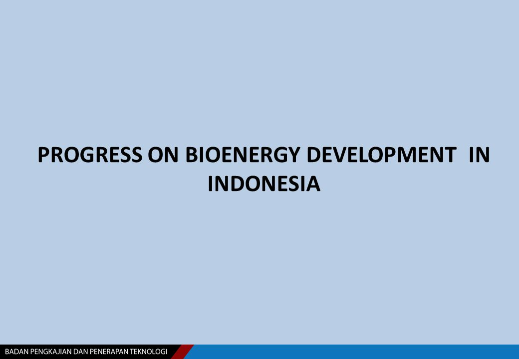 PROGRESS ON BIOENERGY DEVELOPMENT IN INDONESIA