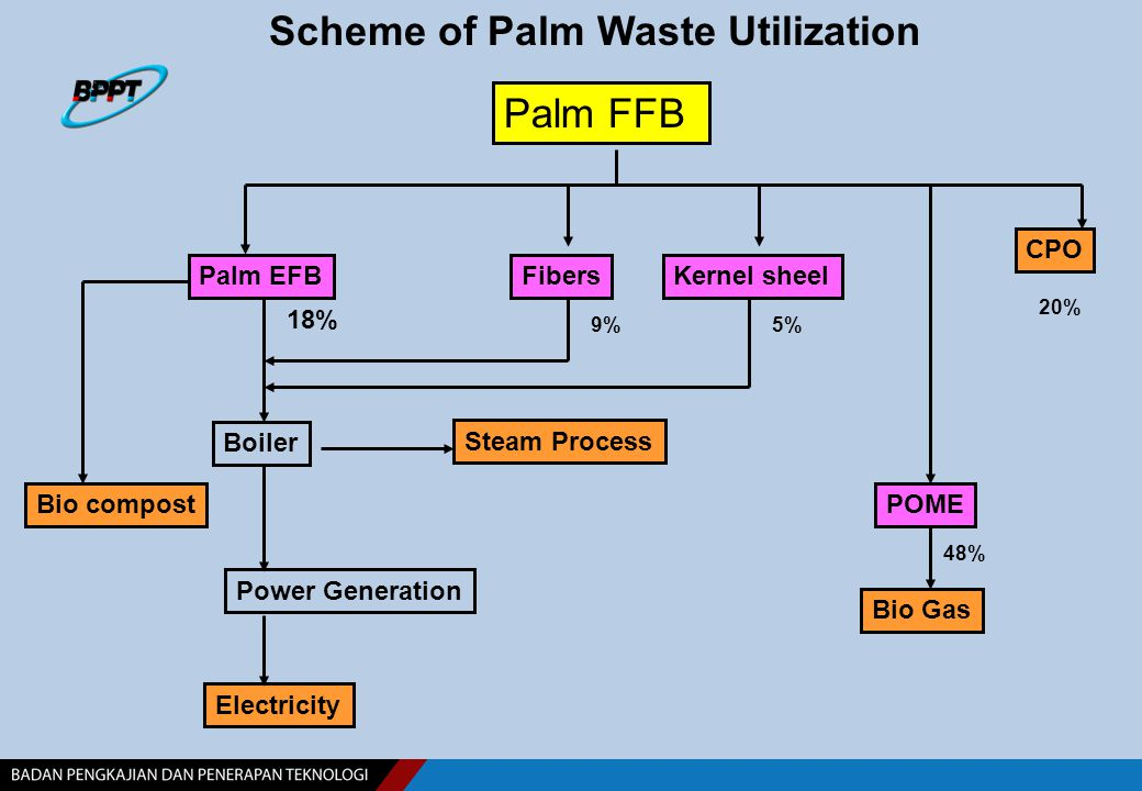 Fibers Palm FFB Steam Process Palm EFB Boiler Electricity Scheme of Palm Waste Utilization Bio compost Kernel sheel Power Generation CPO POME Bio Gas