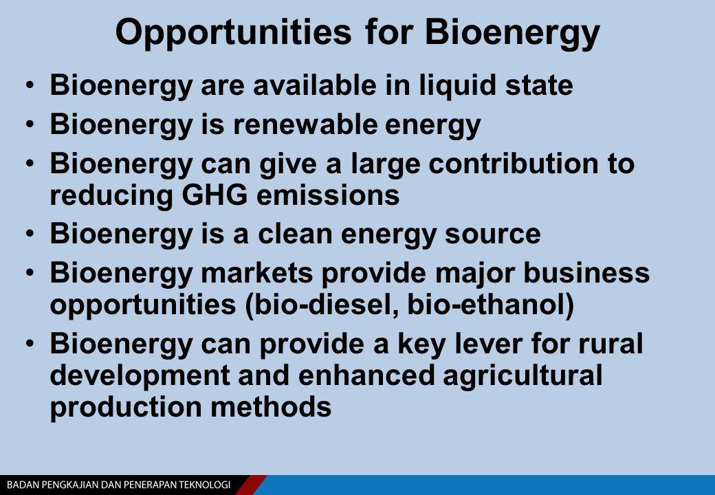 5-20% Crude bio-oil Biodiesel diesel oil Bio-Diesel Diesel Engine: car, Genset Coconut palm Jathropa PURE PLANT OIL(PPO ) and BIODIESEL Raw materials for Biofuel BIOETHANOL Methanol + Cassava mollases Hydrolysis + Fermentation Bioethanol ( 9% ) Dehydration Bioethanol ( FG ) Gasolin Engine Gasoline BioPremium 5-20% Lignoselulosa Pure Plant Oil diesel oil