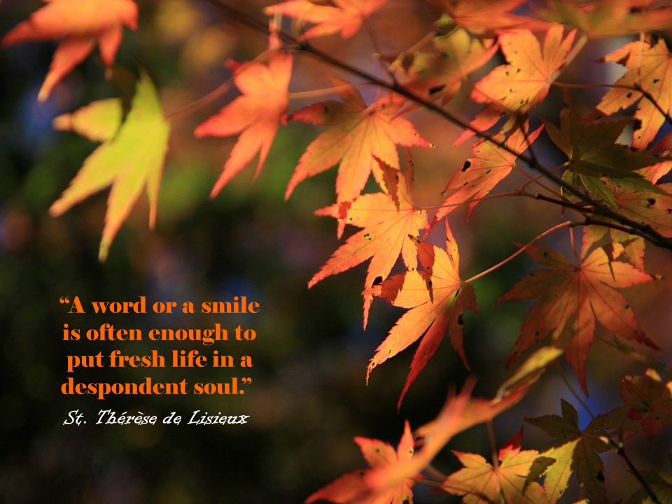 """""""A word or a smile is often enough to put fresh life in a despondent soul."""" St. Thérèse de Lisieux"""