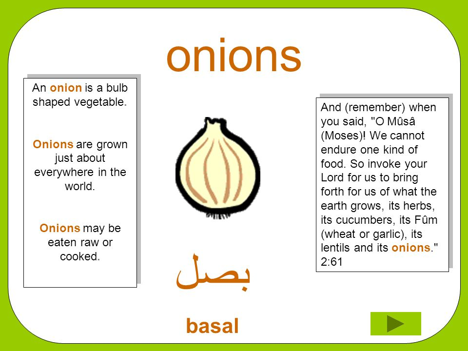 onions ﺑﺼﻞ basal And (remember) when you said, O Mûsâ (Moses).