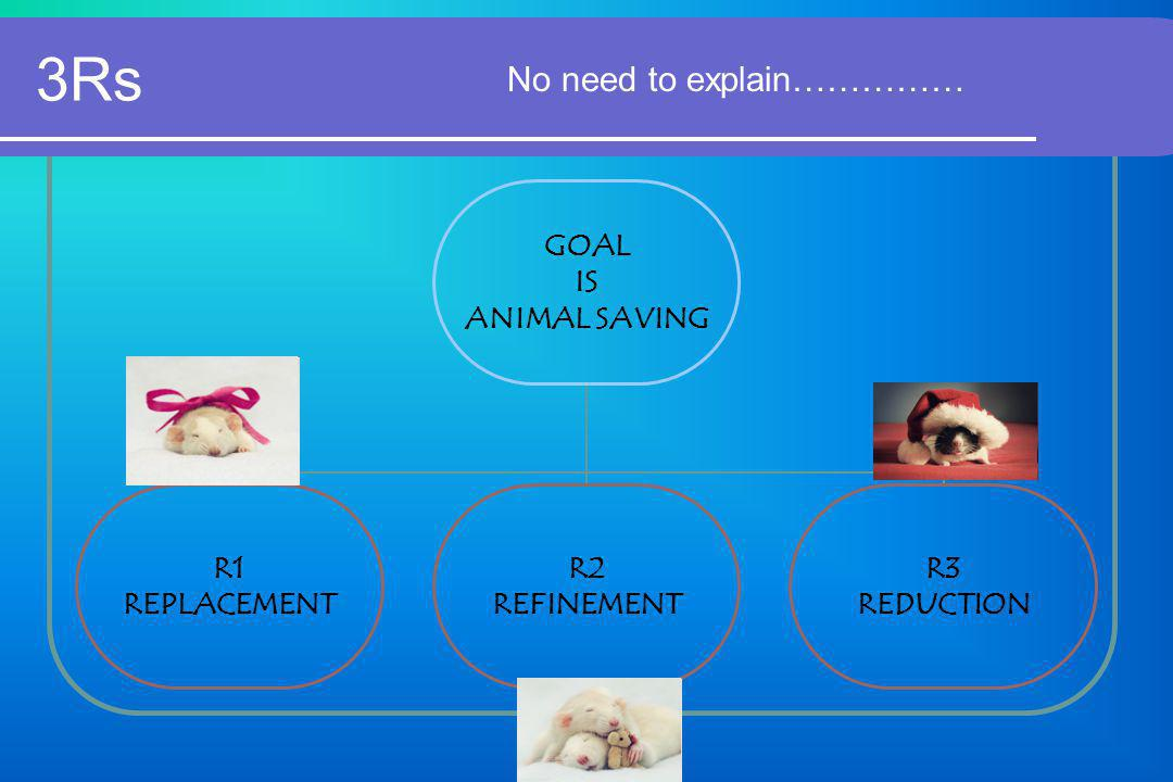3Rs No need to explain…………… GOAL IS ANIMAL SAVING R1 REPLACEMENT R2 REFINEMENT R3 REDUCTION