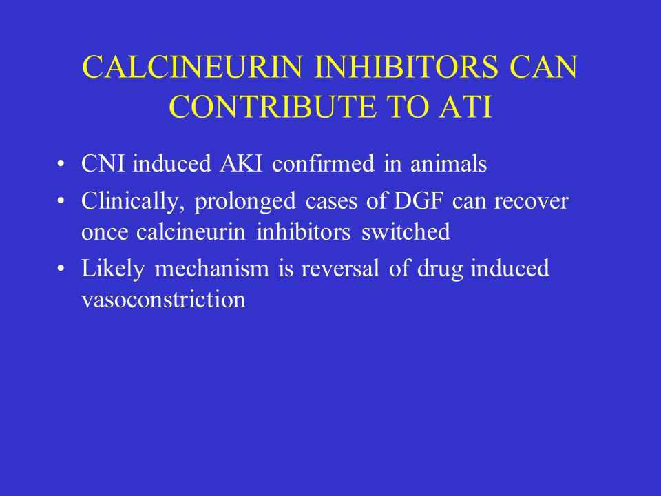 CALCINEURIN INHIBITORS CAN CONTRIBUTE TO ATI CNI induced AKI confirmed in animals Clinically, prolonged cases of DGF can recover once calcineurin inhi
