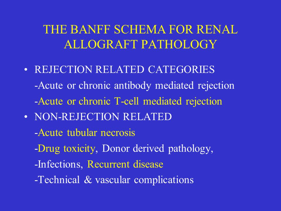 THE BANFF SCHEMA FOR RENAL ALLOGRAFT PATHOLOGY REJECTION RELATED CATEGORIES -Acute or chronic antibody mediated rejection -Acute or chronic T-cell med