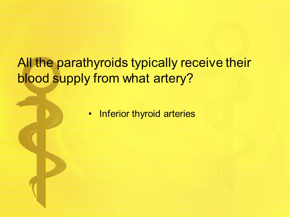 All the parathyroids typically receive their blood supply from what artery? Inferior thyroid arteries
