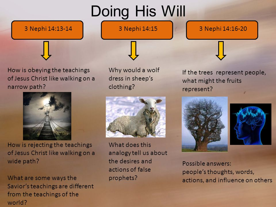 Doing His Will 3 Nephi 14:13-14 How is obeying the teachings of Jesus Christ like walking on a narrow path.