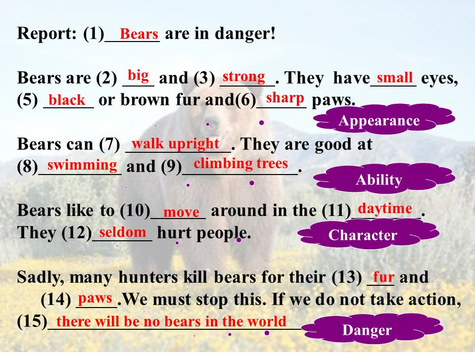 Bears Appearance Character Ability Danger big and strong; small eyes/black or brown fur/sharp paws like to move around in the daytime; seldom hurt people can walk upright; good at swimming and climbing trees hunters hunt them for their fur and paws; no bears in the world