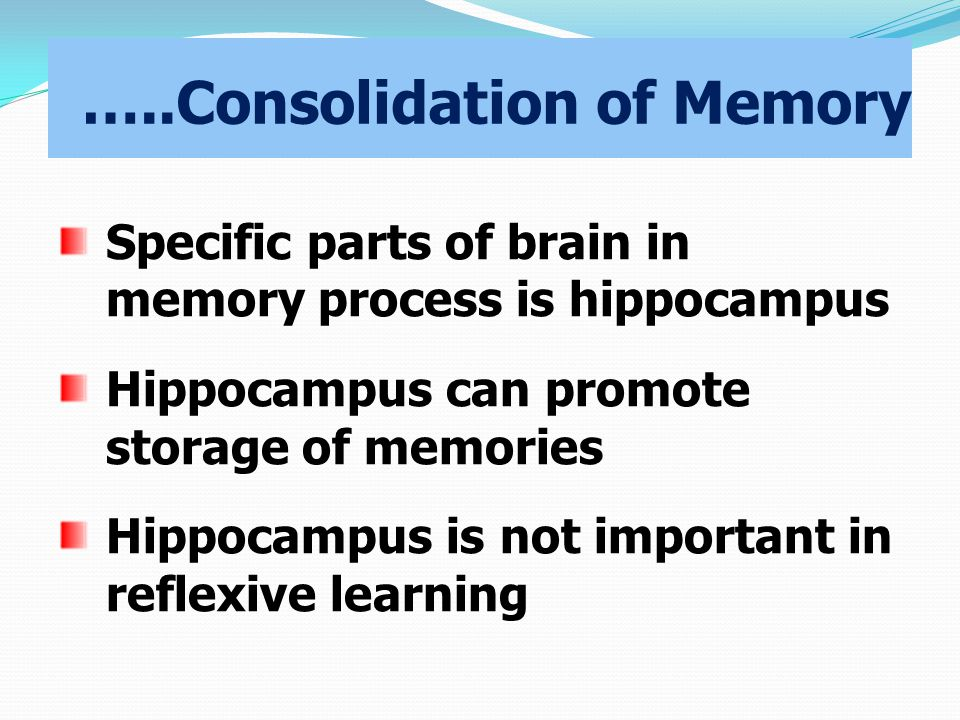 …..Consolidation of Memory Specific parts of brain in memory process is hippocampus Hippocampus can promote storage of memories Hippocampus is not important in reflexive learning
