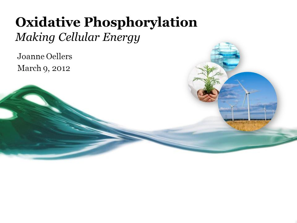 Oxidative Phosphorylation Making Cellular Energy Joanne Oellers March 9, 2012