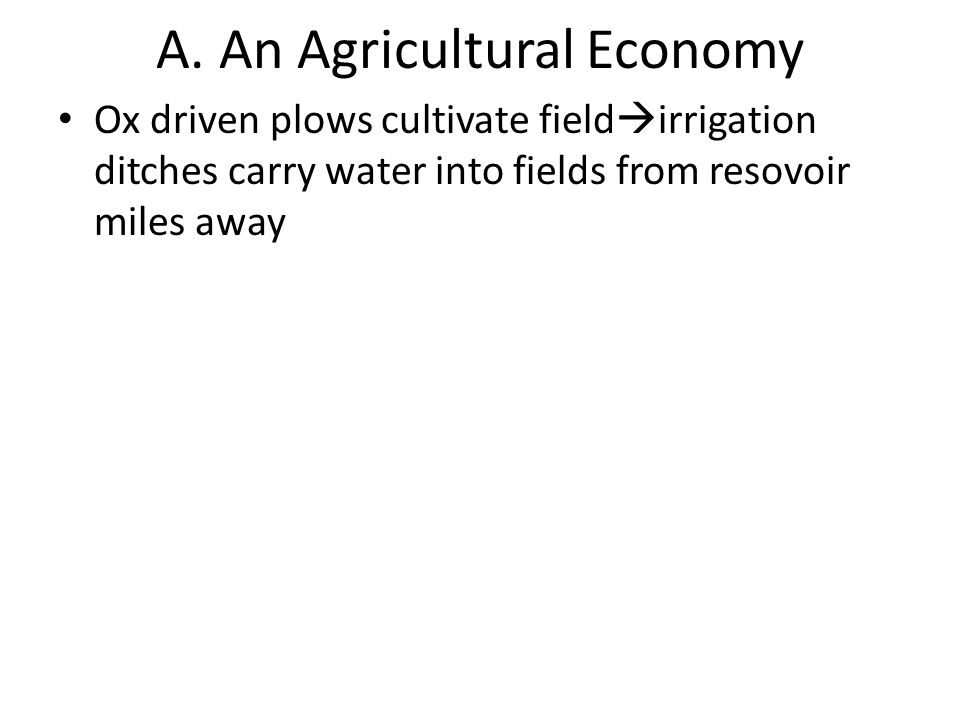 A. An Agricultural Economy Ox driven plows cultivate field  irrigation ditches carry water into fields from resovoir miles away