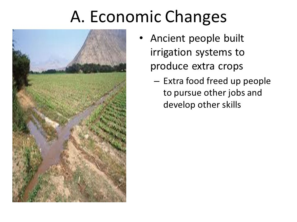 A. Economic Changes Ancient people built irrigation systems to produce extra crops – Extra food freed up people to pursue other jobs and develop other