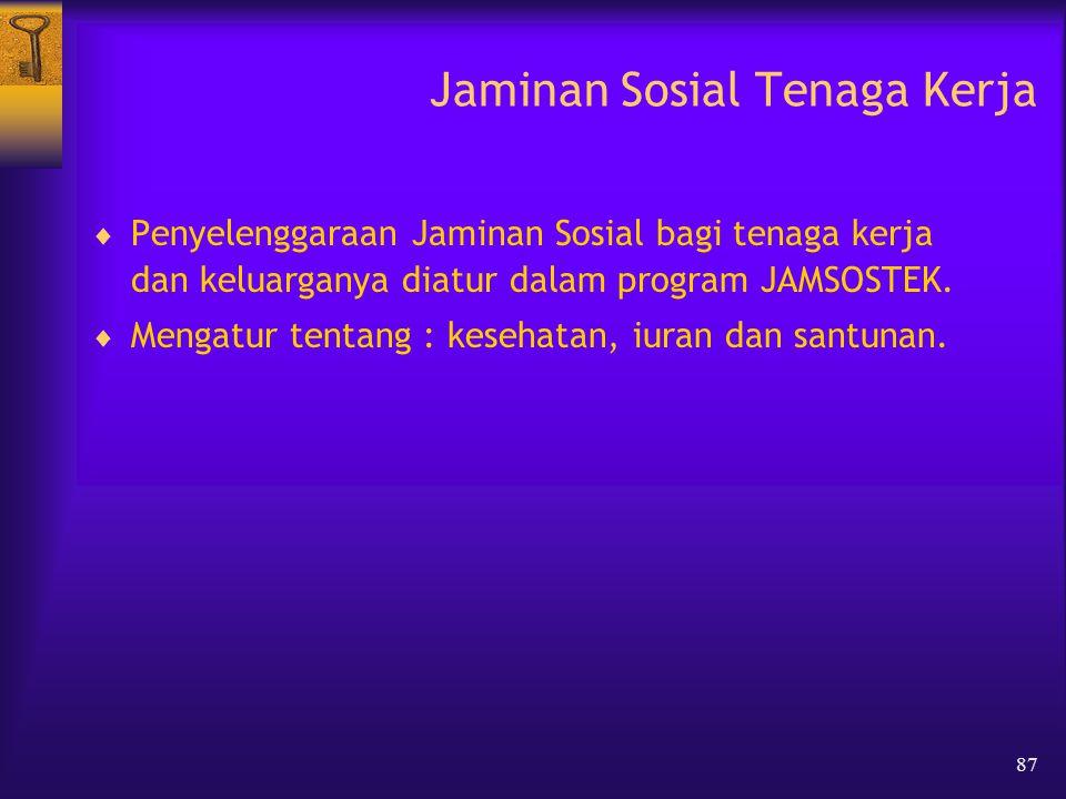 87 Jaminan Sosial Tenaga Kerja  Penyelenggaraan Jaminan Sosial bagi tenaga kerja dan keluarganya diatur dalam program JAMSOSTEK.