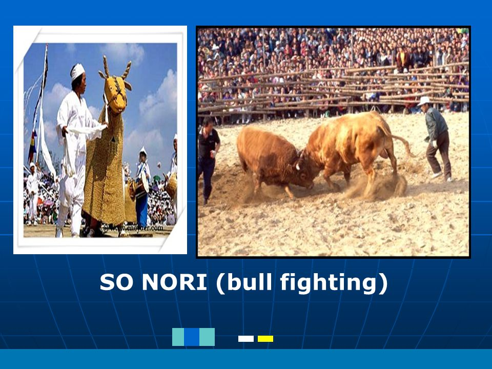SO NORI (bull fighting)