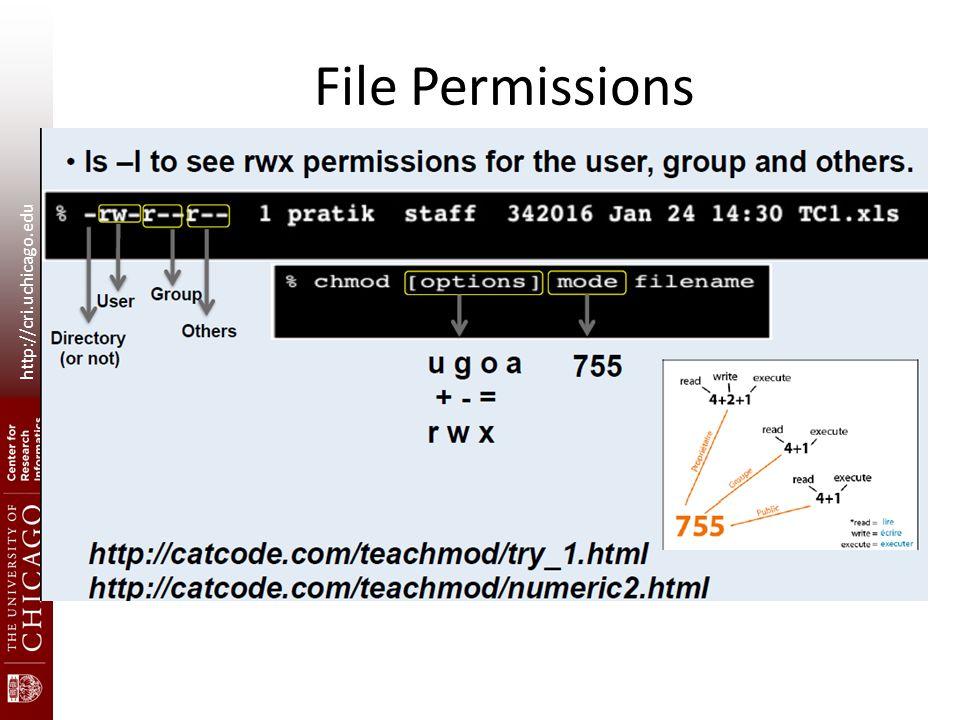 http://cri.uchicago.edu File Permissions