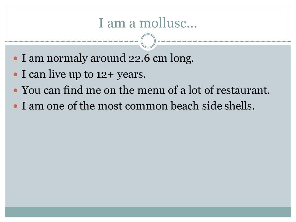 I am a mollusc… I am normaly around 22.6 cm long.I can live up to 12+ years.
