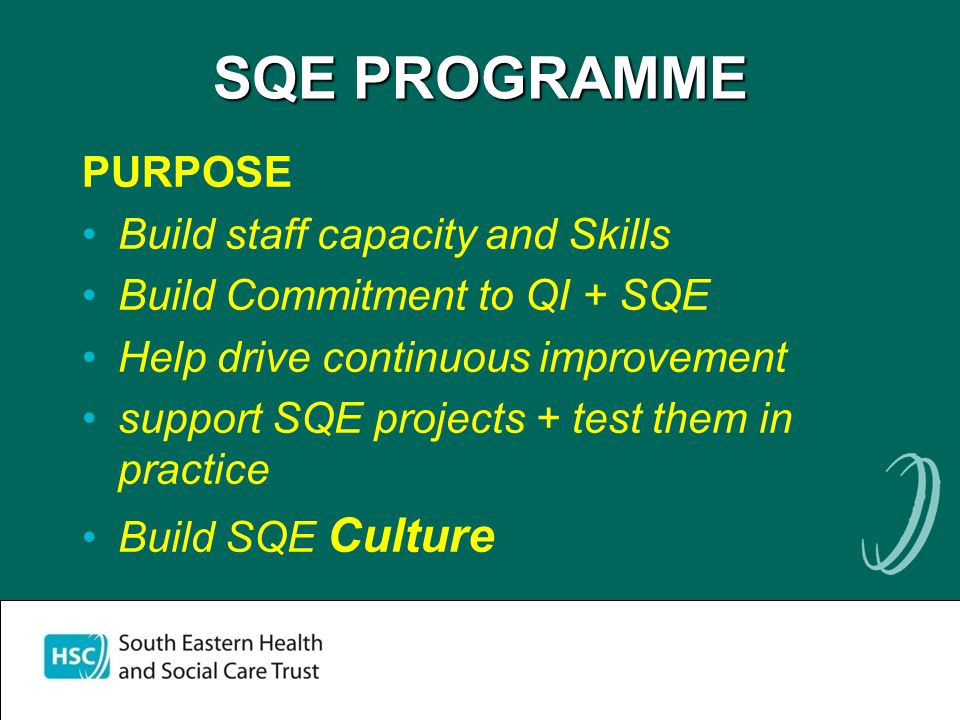 SQE PROGRAMME PURPOSE Build staff capacity and Skills Build Commitment to QI + SQE Help drive continuous improvement support SQE projects + test them in practice Build SQE Culture