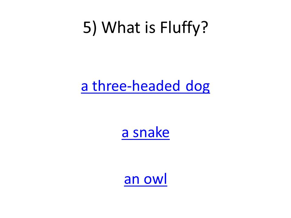 5) What is Fluffy a three-headed dog a snake an owl