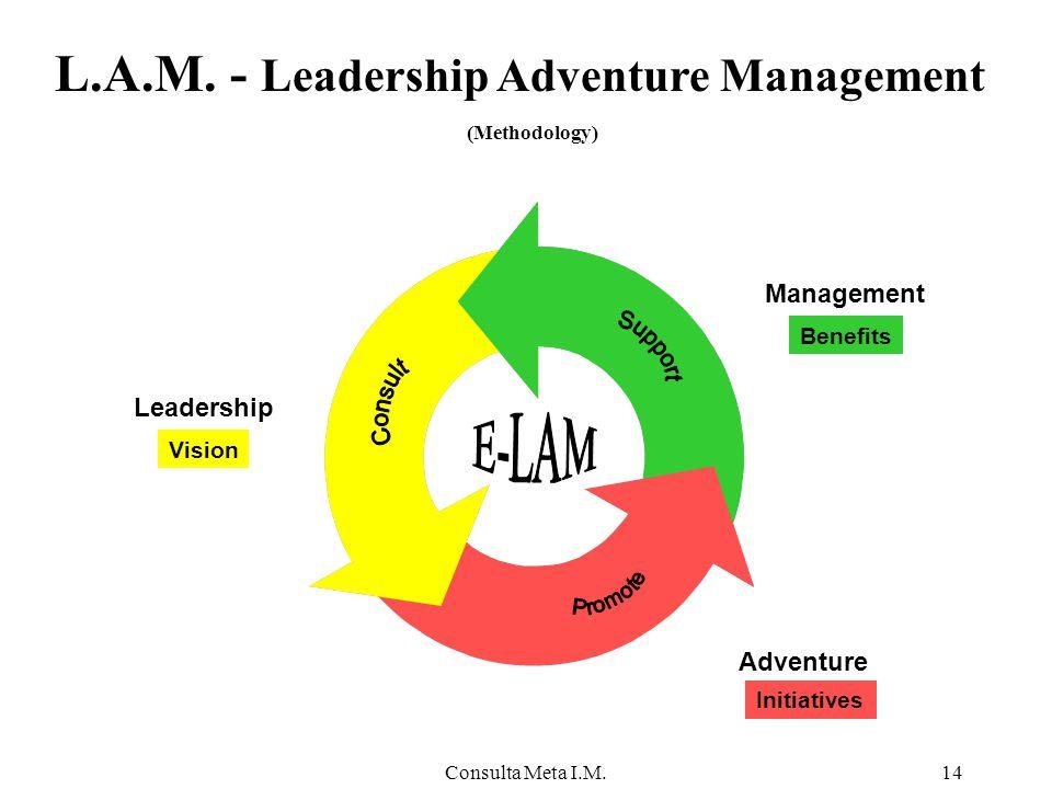 Consulta Meta I.M.14 Leadership Adventure Management Initiatives Vision L.A.M.