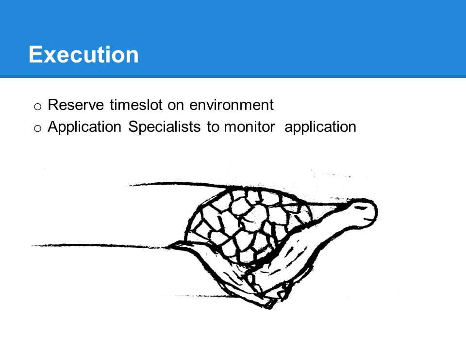 Execution o Reserve timeslot on environment o Application Specialists to monitor application