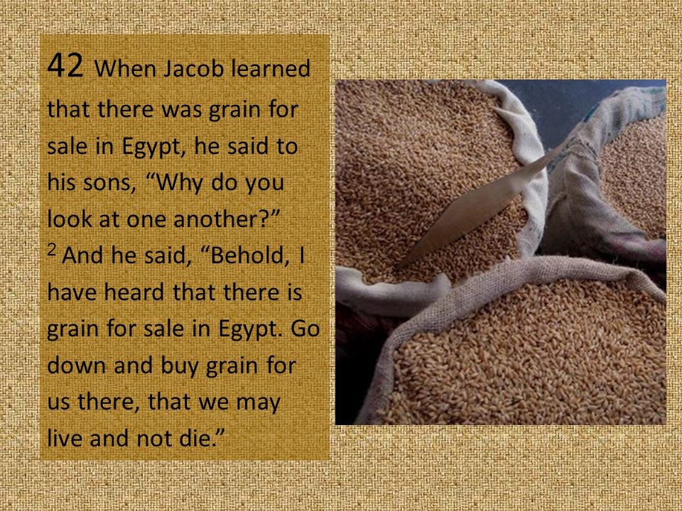 42 When Jacob learned that there was grain for sale in Egypt, he said to his sons, Why do you look at one another 2 And he said, Behold, I have heard that there is grain for sale in Egypt.