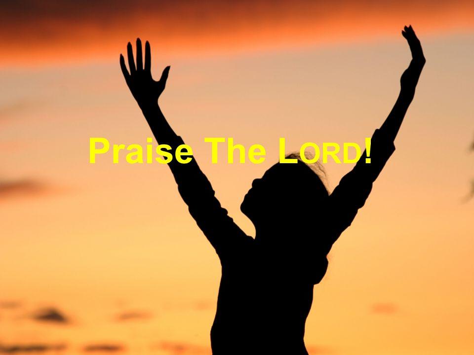 Praise The L ORD !