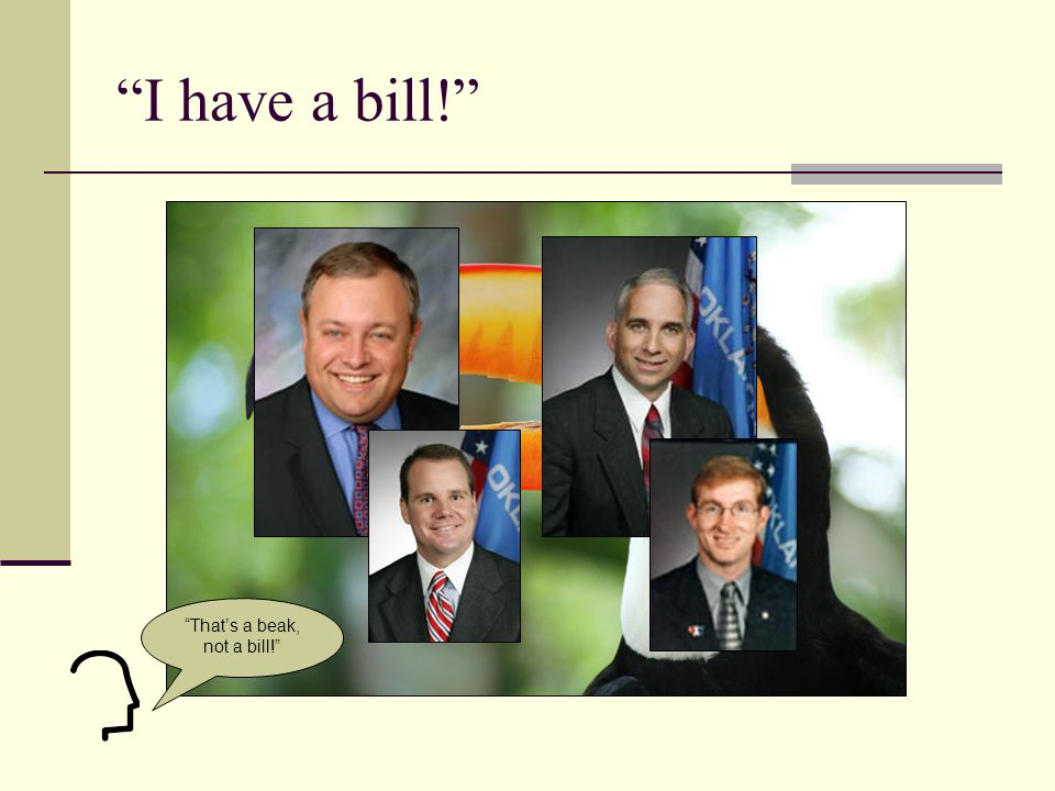 2009/10 Senate Leadership The Pro-Tem Assigns Bills to Committees.