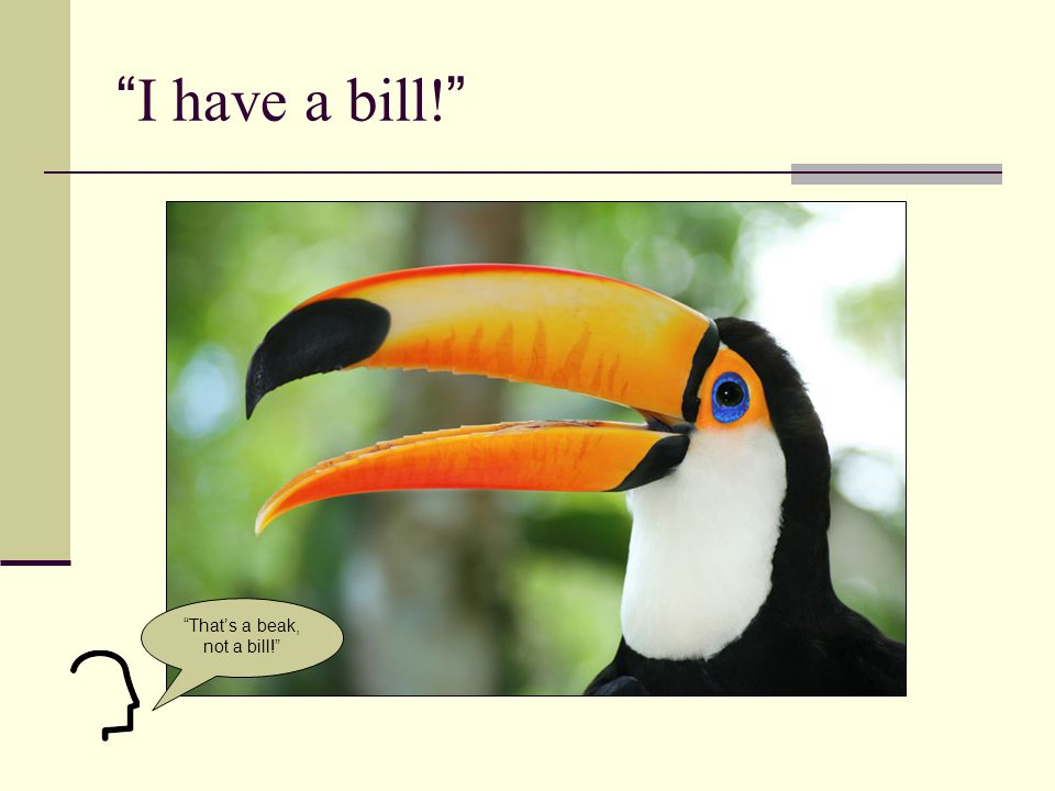I have a bill! That's a beak, not a bill!