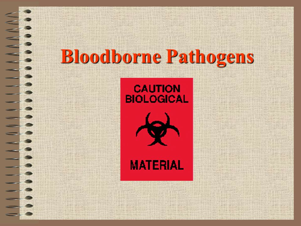 Bloodborne Pathogen Transmission Bloodborne pathogens are transmitted through contact with infected human blood and other body fluids such as: Semen Vaginal secretions Cerebrospinal fluid Synovial fluid Pleural fluid Peritoneal fluid Amniotic fluid Saliva