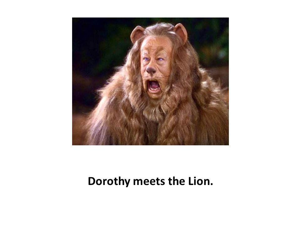 Dorothy meets the Lion.