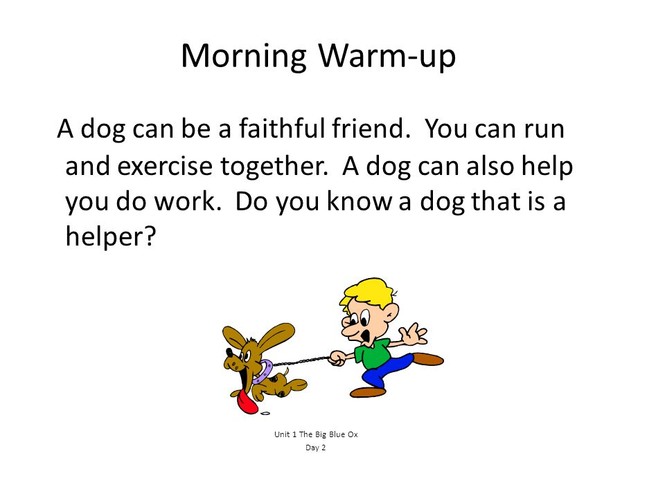 Morning Warm-up A dog can be a faithful friend.You can run and exercise together.