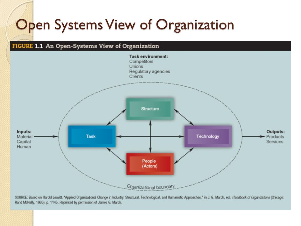 Open Systems View of Organization