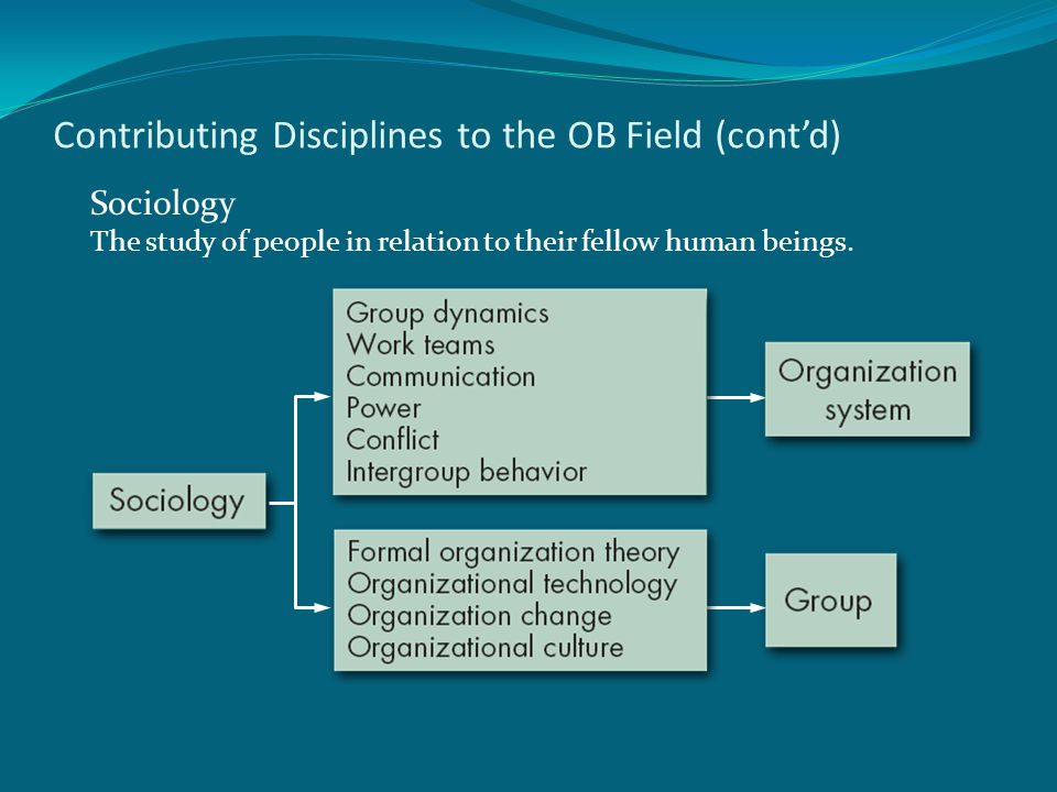 Contributing Disciplines to the OB Field (cont'd) Sociology The study of people in relation to their fellow human beings.