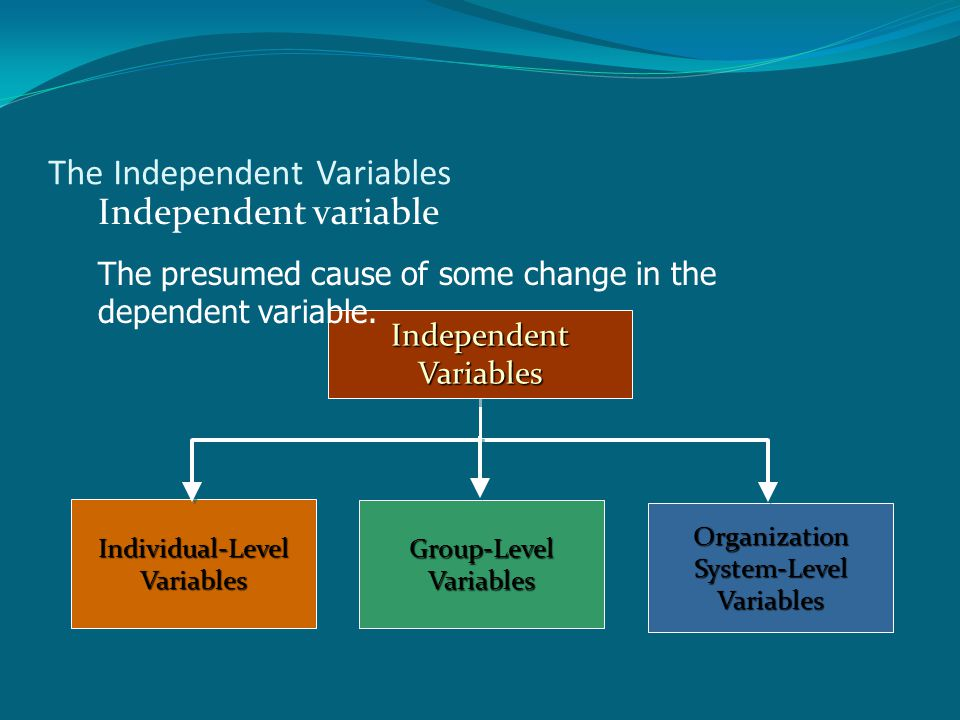 The Independent Variables Independent Variables Individual-Level Variables Organization System-Level Variables Group-Level Variables Independent variable The presumed cause of some change in the dependent variable.