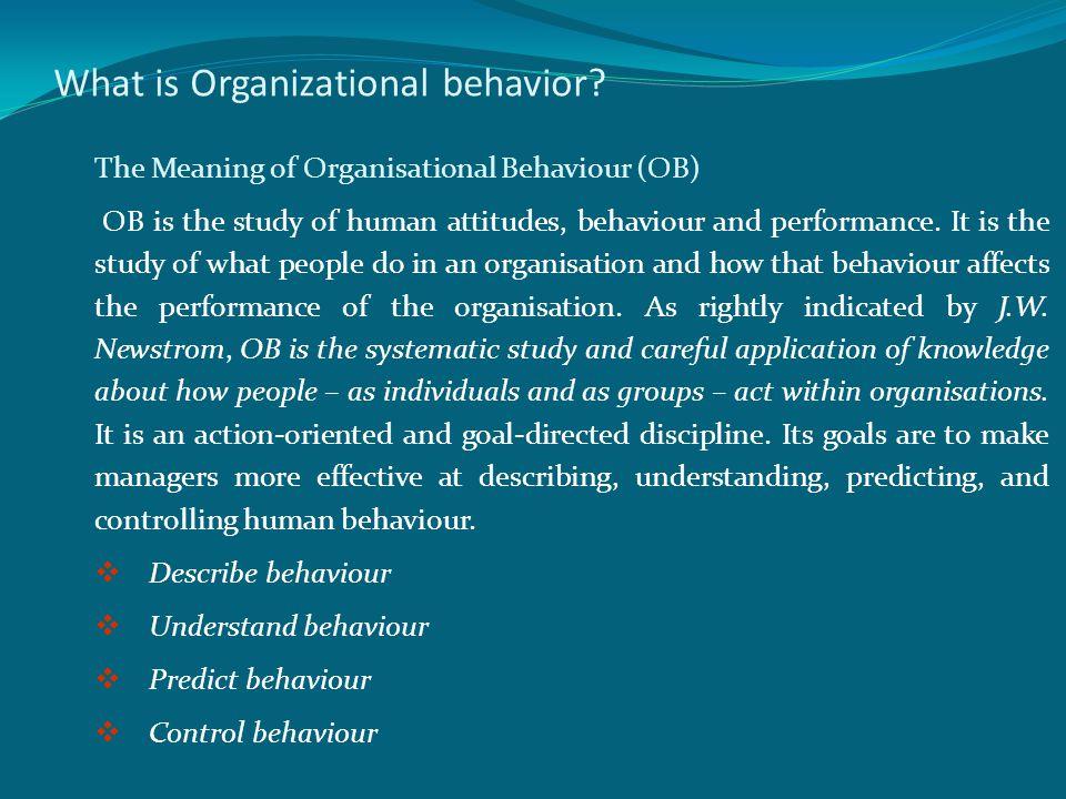 What is Organizational behavior.