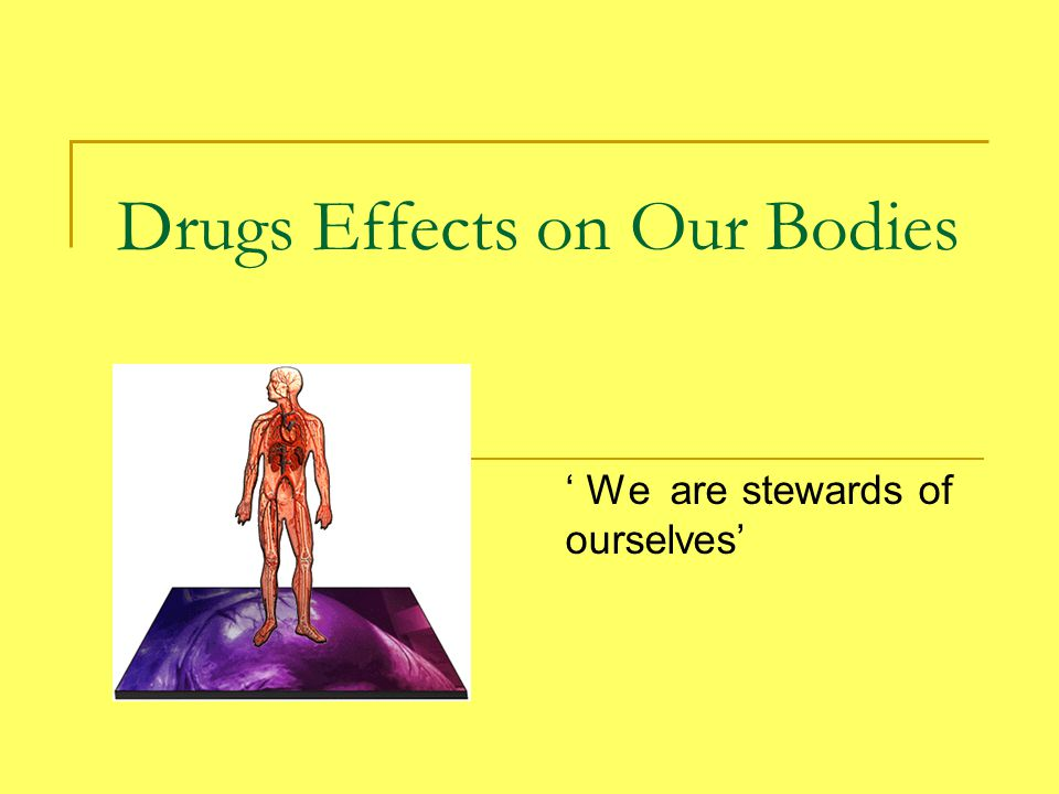Drugs Effects on Our Bodies ' We are stewards of ourselves'