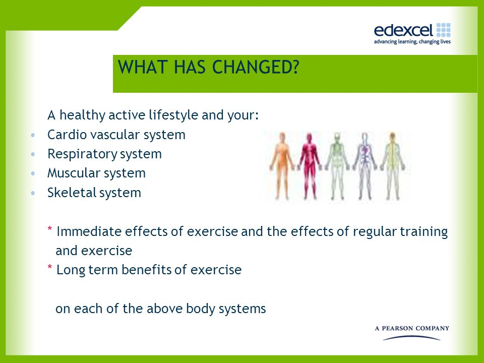 WHAT HAS CHANGED? A healthy active lifestyle and your: Cardio vascular system Respiratory system Muscular system Skeletal system * Immediate effects o