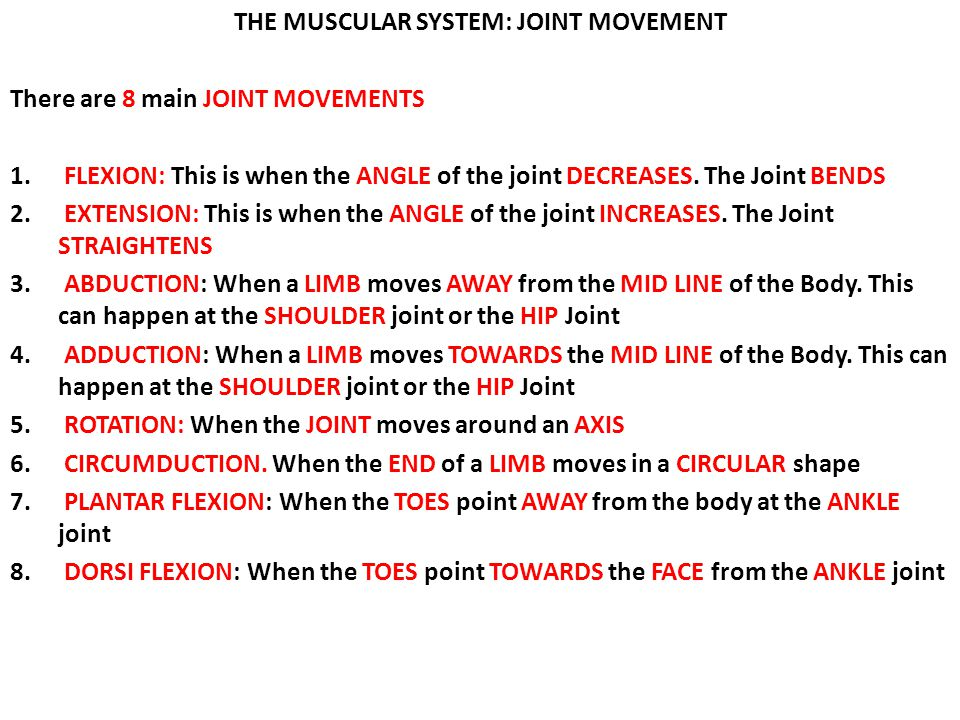 THE MUSCULAR SYSTEM: JOINT MOVEMENT There are 8 main JOINT MOVEMENTS 1. FLEXION: This is when the ANGLE of the joint DECREASES. The Joint BENDS 2. EXT