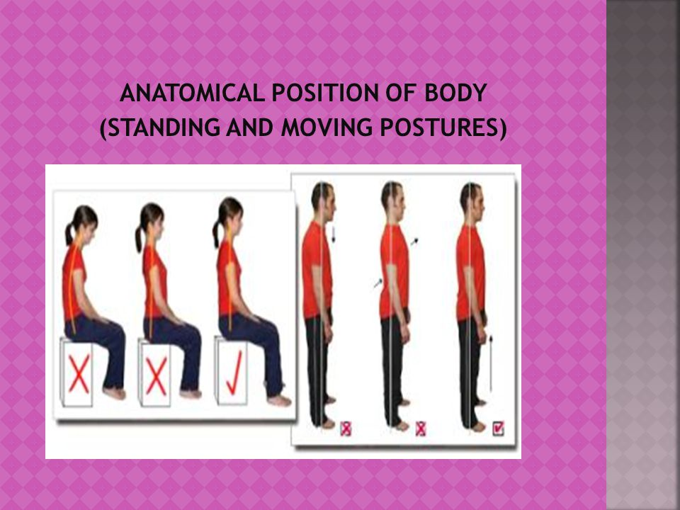 ANATOMICAL POSITION OF BODY (STANDING AND MOVING POSTURES)