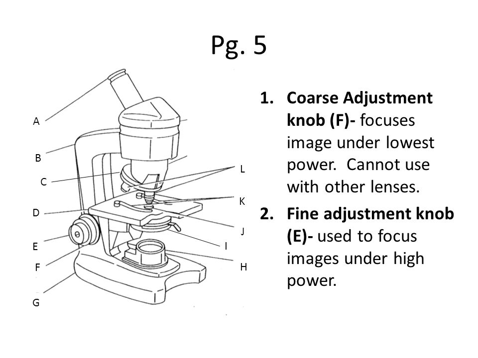 Pg. 5 1.Coarse Adjustment knob (F)- focuses image under lowest power.