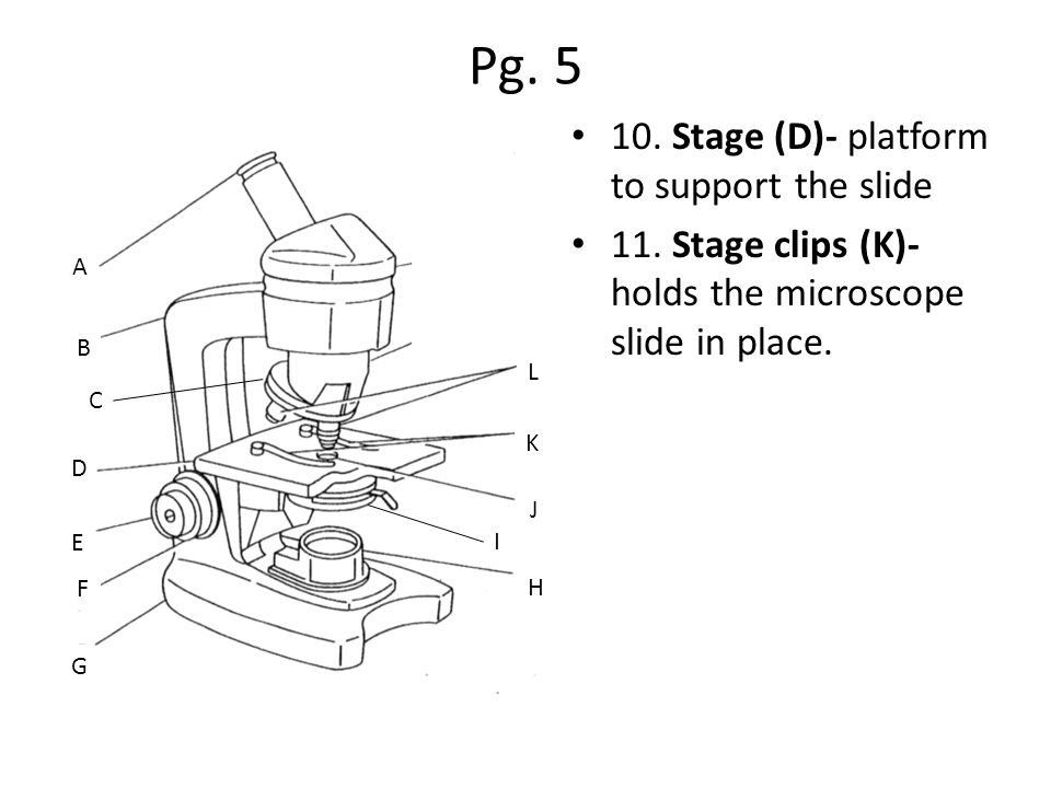 Pg. 5 10. Stage (D)- platform to support the slide 11.