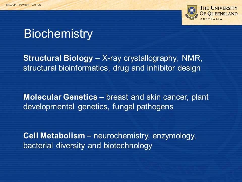 Structural Biology – X-ray crystallography, NMR, structural bioinformatics, drug and inhibitor design Molecular Genetics – breast and skin cancer, plant developmental genetics, fungal pathogens Cell Metabolism – neurochemistry, enzymology, bacterial diversity and biotechnology Biochemistry