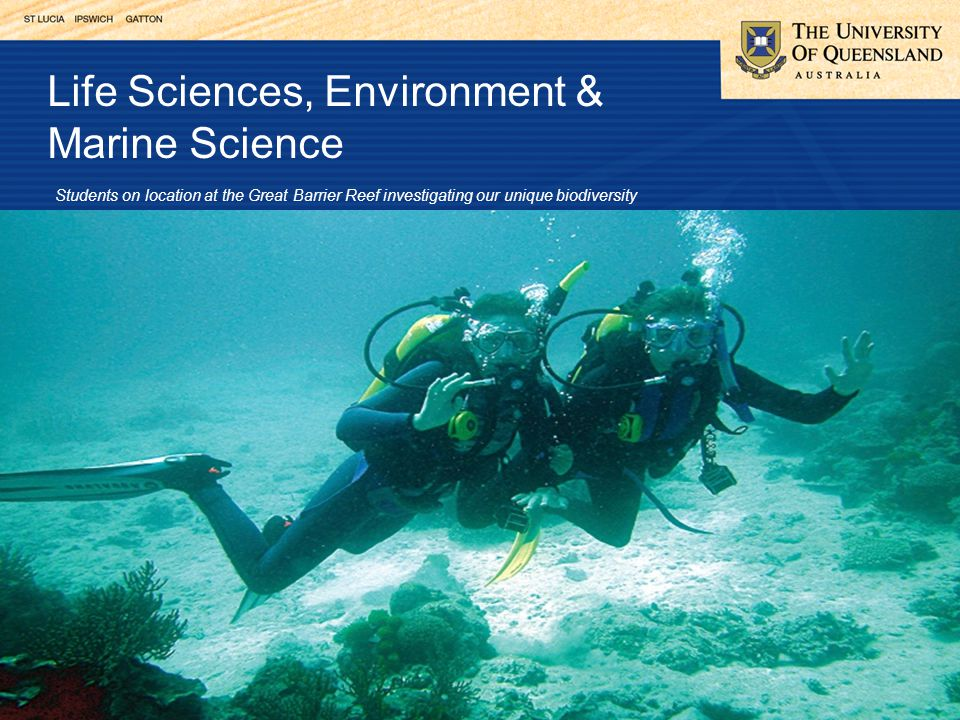 Life Sciences, Environment & Marine Science Students on location at the Great Barrier Reef investigating our unique biodiversity