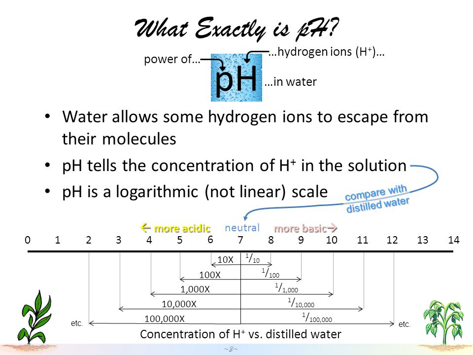 What Exactly is pH.